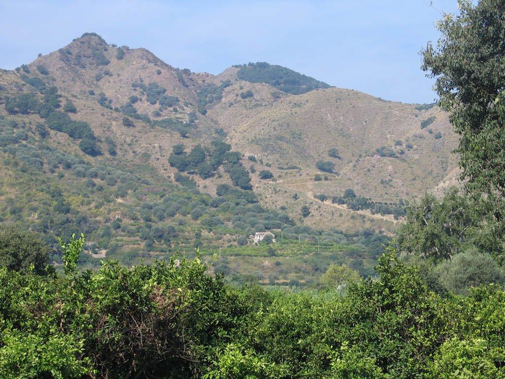 Området hvor olivenolien kommer fra på Sicilien, set fra den anden side af dalen