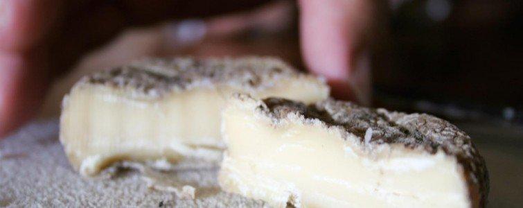 Kraftig modnet ost fra markedet i Bayeux