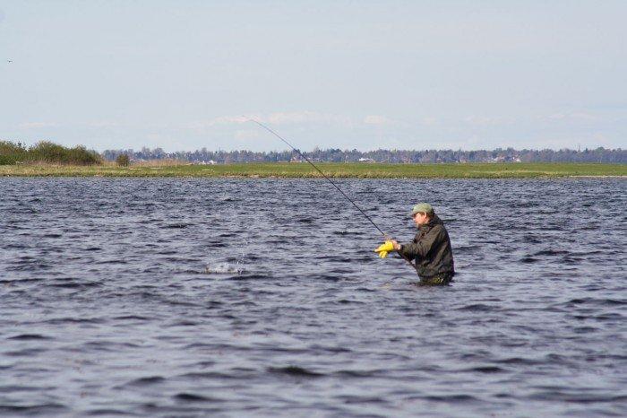 Hornfiskeri