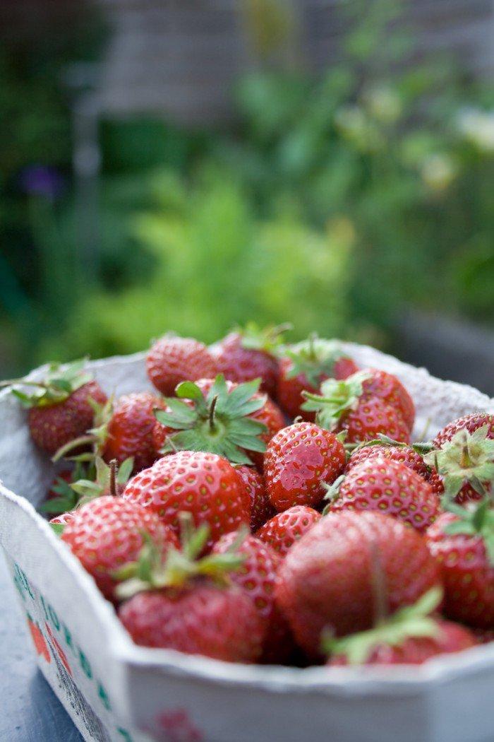 Friske modne danske jordbær