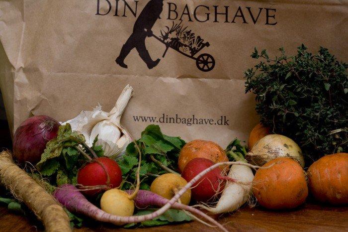 Dagens høst og lidt mere gratis reklame for dinbaghave.dk