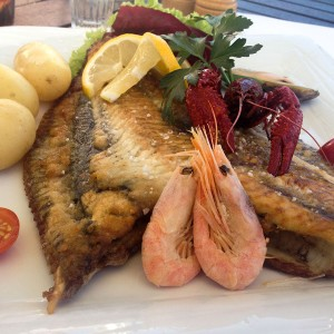 <b>Fjordkroen - fantastisk udsigt over Præstø fjord og rigtig god mad</b>