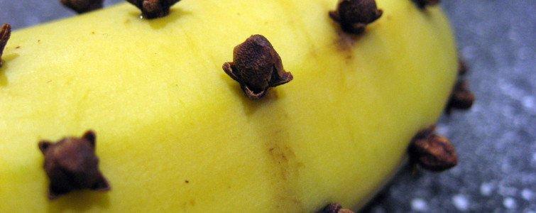 Banan-med-nelliker-i-1